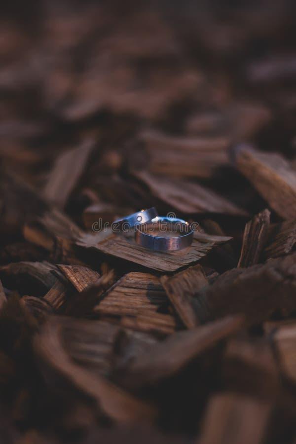 Γαμήλια δαχτυλίδια στις ξύλινες μπριζόλες στοκ εικόνα με δικαίωμα ελεύθερης χρήσης