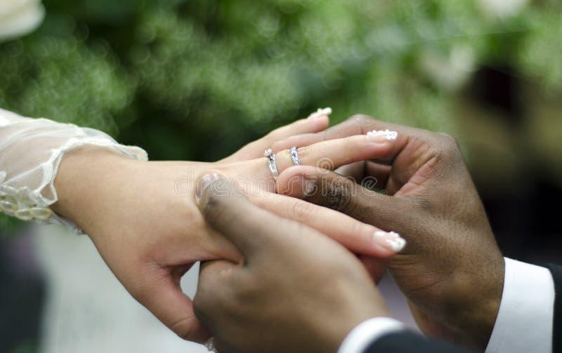 Γαμήλια δαχτυλίδια στο διαφυλετικό ζεύγος στοκ φωτογραφία με δικαίωμα ελεύθερης χρήσης