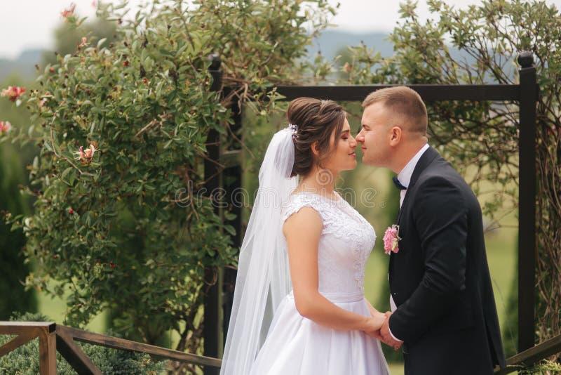 Γαμήλια τελετή έξω ακριβώς παντρεμένος Υπόβαθρο των βουνών στοκ φωτογραφία