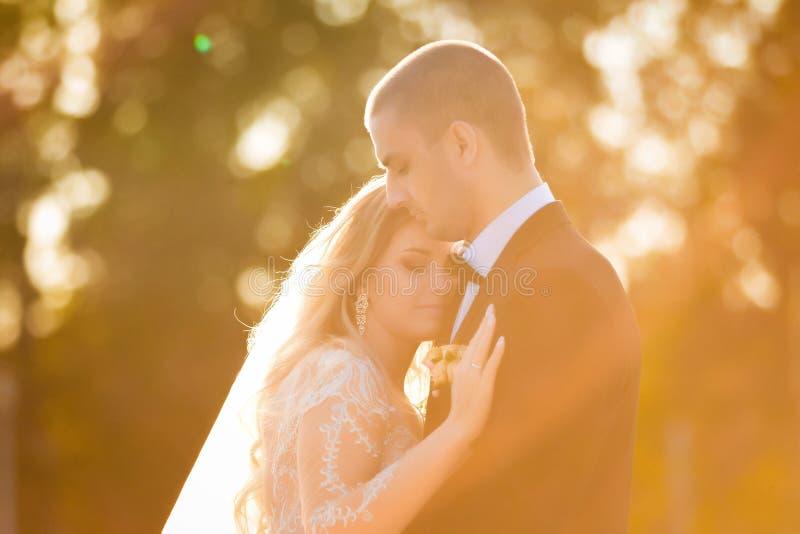 Γαμήλιο ζεύγος που αγκαλιάζει σε ένα φως ήλιων στοκ εικόνα