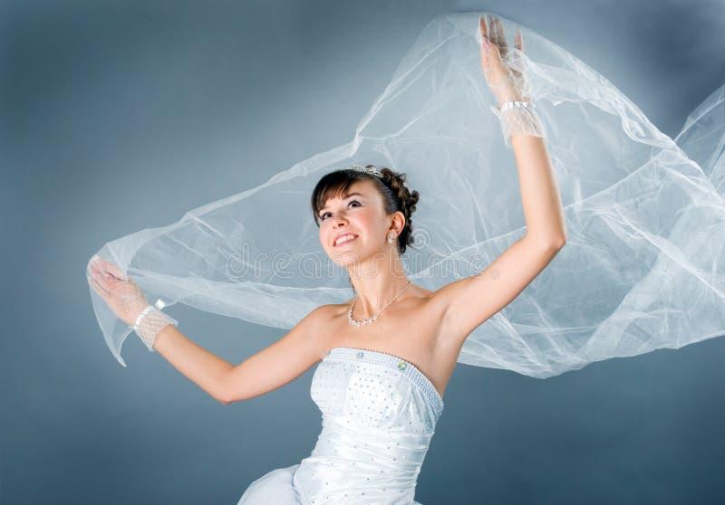 γαμήλιο λευκό κομψότητα&sig στοκ εικόνα με δικαίωμα ελεύθερης χρήσης