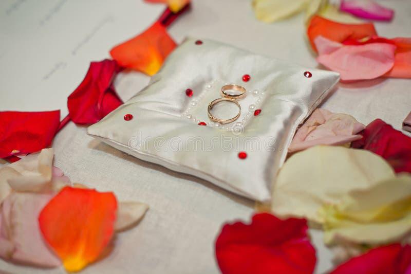 Γαμήλια δαχτυλίδια σε ένα μαξιλάρι 1009 στοκ εικόνα με δικαίωμα ελεύθερης χρήσης
