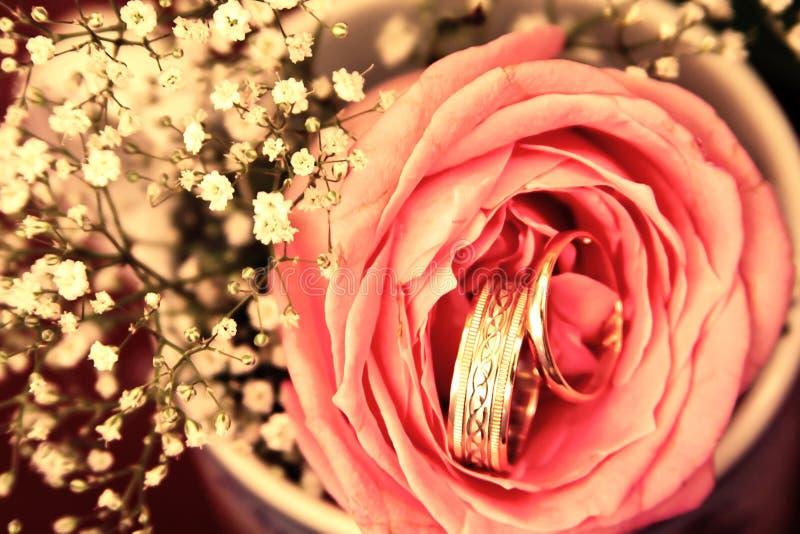 Γαμήλια δαχτυλίδια στο ροδαλό λουλούδι με το υπόβαθρο διακοσμήσεων που φιλτράρεται στοκ φωτογραφία με δικαίωμα ελεύθερης χρήσης