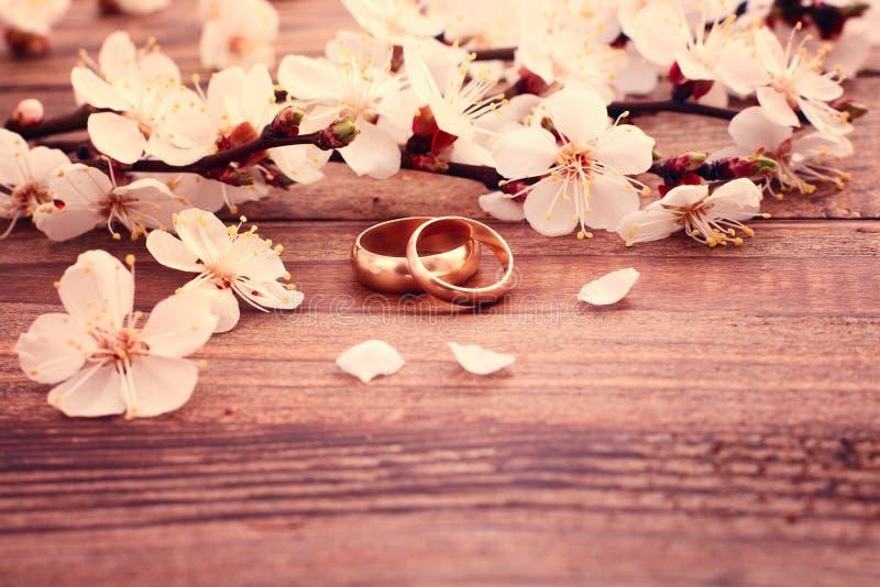 γαμήλιο λευκό δαχτυλιδιών ανασκόπησης ανοιχτό Νυφική ανθοδέσμη των άσπρων λουλουδιών στοκ εικόνες