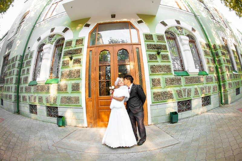 Γαμήλιο ζευγάρι που αγκαλιάζει και που φιλά στοκ φωτογραφίες με δικαίωμα ελεύθερης χρήσης