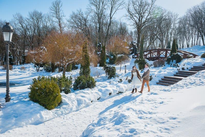 Γαμήλιο ζεύγος σε μια ελκυστική wither ημέρα, που περπατά, έχοντας τη διασκέδαση πίσω από το πεύκο-δέντρο αγροτικό κοντό γαμήλιο  στοκ φωτογραφίες με δικαίωμα ελεύθερης χρήσης