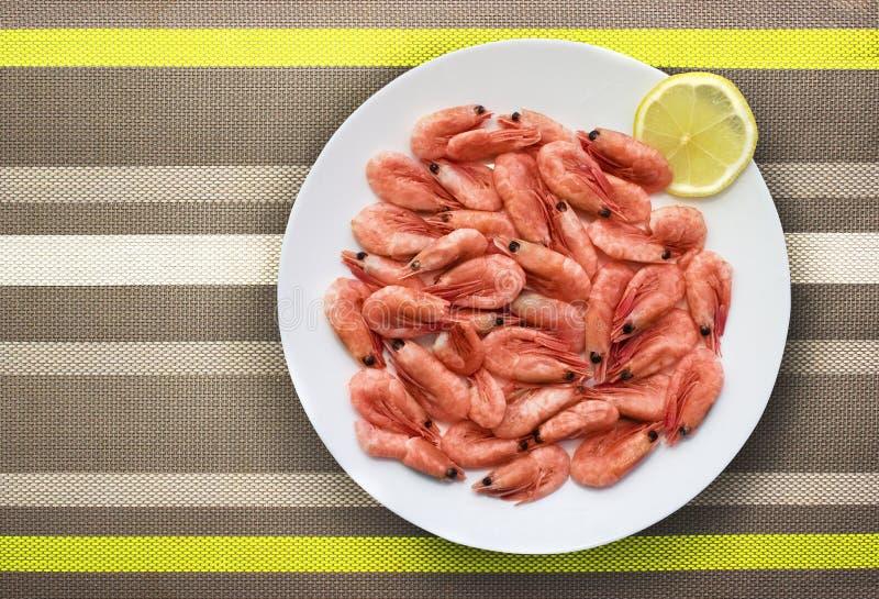 Γαρίδες θάλασσας στο πιάτο στοκ εικόνες με δικαίωμα ελεύθερης χρήσης
