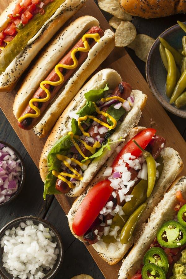 Γαστρονομικός έψησε όλα τα σκυλιά Hots βόειου κρέατος στη σχάρα στοκ εικόνα με δικαίωμα ελεύθερης χρήσης