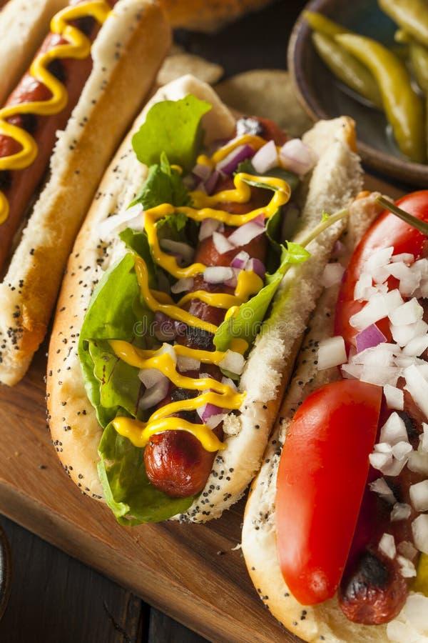 Γαστρονομικός έψησε όλα τα σκυλιά Hots βόειου κρέατος στη σχάρα στοκ εικόνες