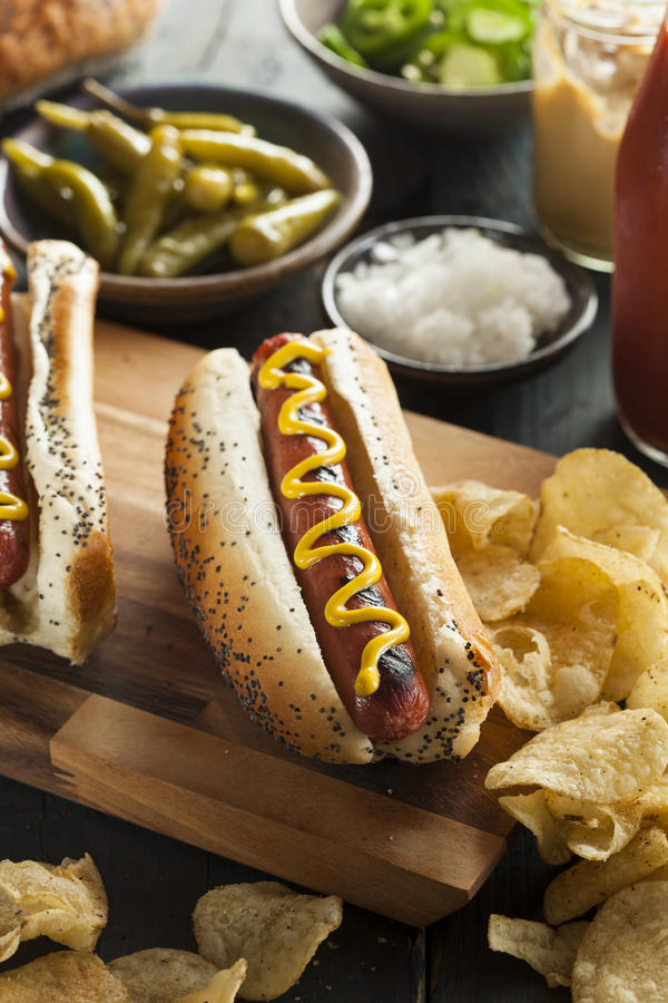 Γαστρονομικός έψησε όλα τα σκυλιά Hots βόειου κρέατος στη σχάρα στοκ φωτογραφίες με δικαίωμα ελεύθερης χρήσης
