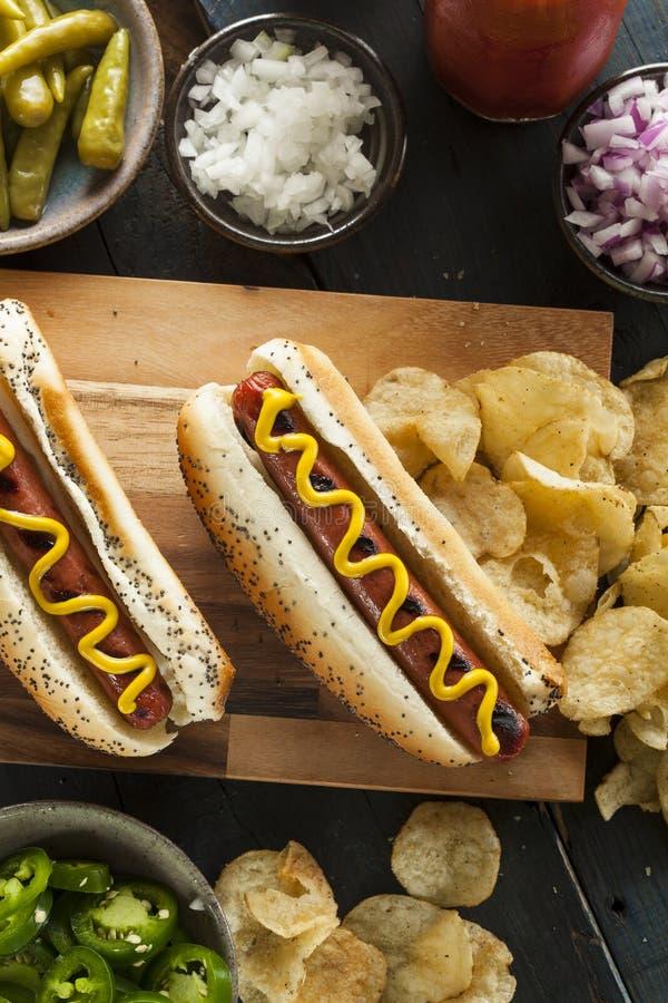 Γαστρονομικός έψησε όλα τα σκυλιά Hots βόειου κρέατος στη σχάρα στοκ φωτογραφία με δικαίωμα ελεύθερης χρήσης