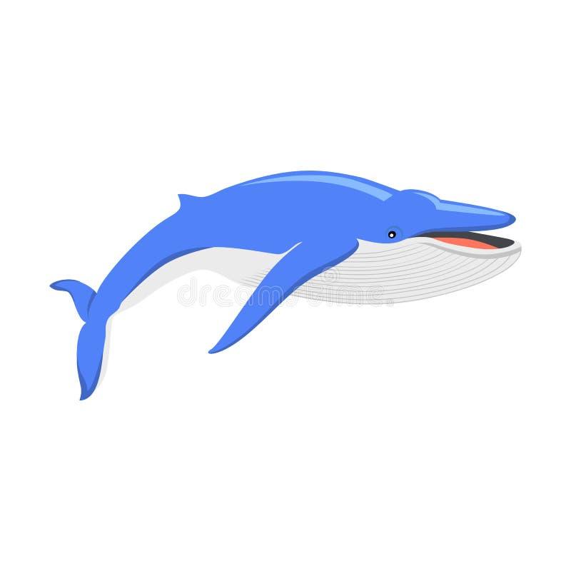 Γαλάζια φάλαινα στο άσπρο υπόβαθρο διανυσματική απεικόνιση