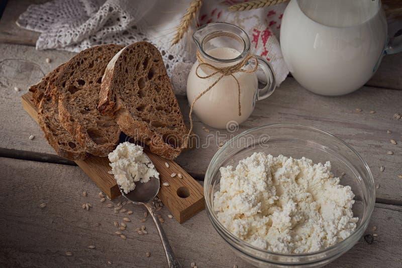 γαλακτοκομικά φρέσκα πρ&om Γάλα, τυρί εξοχικών σπιτιών, ξινή κρέμα, multigra στοκ φωτογραφίες με δικαίωμα ελεύθερης χρήσης
