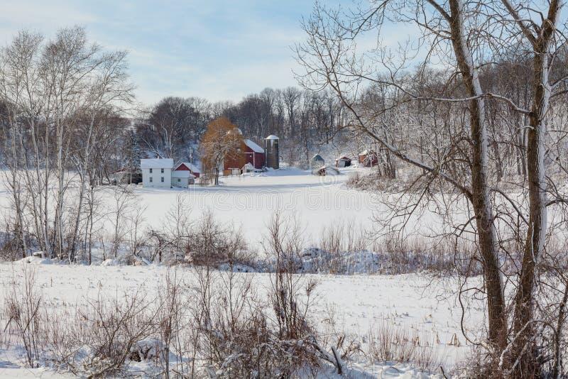 Γαλακτοκομικό αγρόκτημα στο φρέσκο χιόνι στοκ εικόνες
