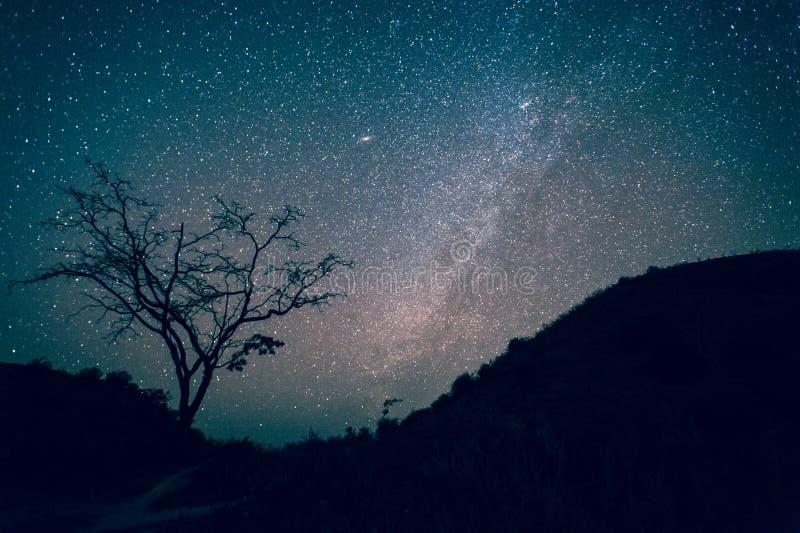 Γαλακτώδης γαλαξίας τρόπων, νυχτερινός ουρανός με που καταπλήσσει Stars στοκ εικόνα με δικαίωμα ελεύθερης χρήσης