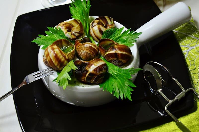 Γαλλικά σαλιγκάρια στοκ εικόνα