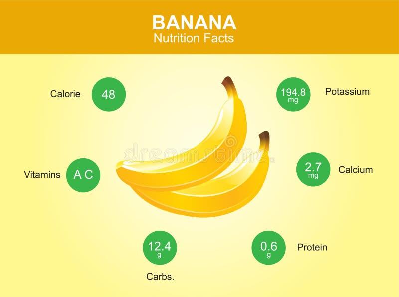 Γεγονότα διατροφής μπανανών, φρούτα μπανανών με τις πληροφορίες, διάνυσμα μπανανών διανυσματική απεικόνιση