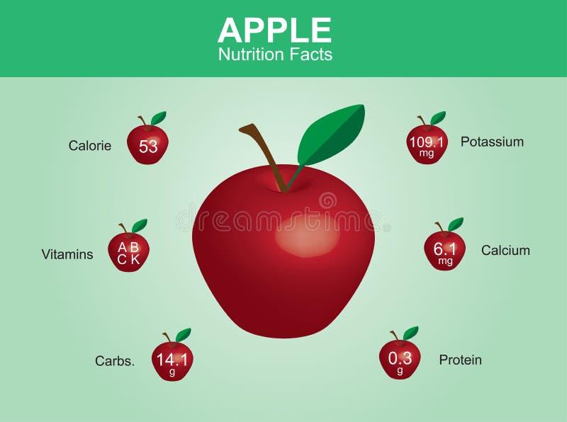 Γεγονότα διατροφής της Apple, φρούτα μήλων με τις πληροφορίες, διάνυσμα μήλων απεικόνιση αποθεμάτων