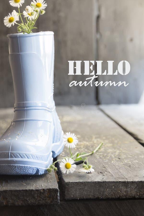 Γειά σου απόσπασμα, μαργαρίτα και μπότες φθινοπώρου εμπνευσμένο στοκ εικόνα με δικαίωμα ελεύθερης χρήσης