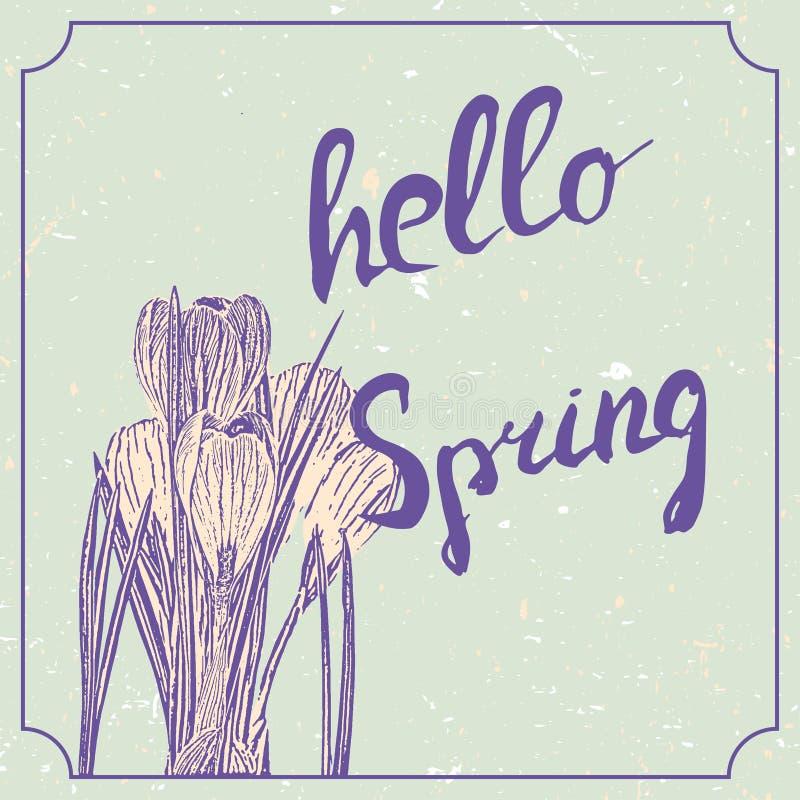 Γειά σου συρμένη χέρι εγγραφή άνοιξη με τα λουλούδια κρόκων Εκλεκτής ποιότητας πρότυπο σχεδίου γάμου grunge, floral έργο τέχνης δ διανυσματική απεικόνιση