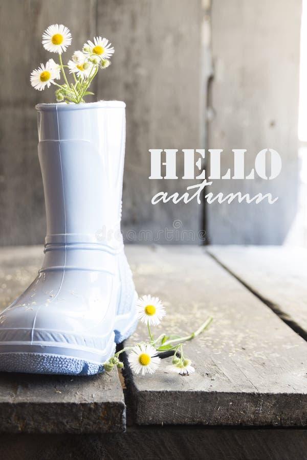 Γειά σου φθινόπωρο, μαργαρίτα και μπότες σε έναν εκλεκτής ποιότητας πίνακα, στοκ φωτογραφία με δικαίωμα ελεύθερης χρήσης