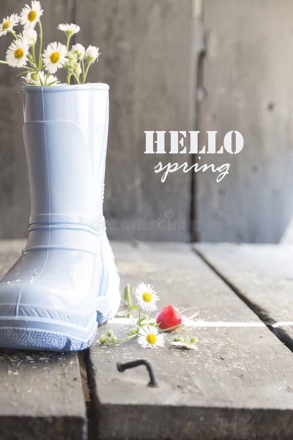Γειά σου φθινόπωρο, μαργαρίτα και μπότες σε έναν εκλεκτής ποιότητας πίνακα, στοκ εικόνα