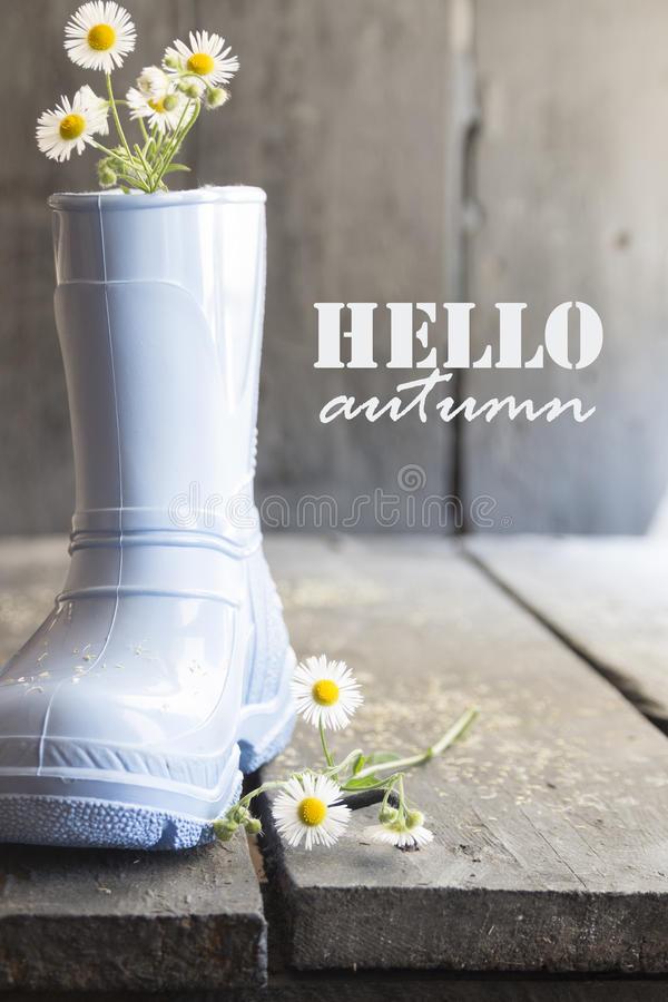 Γειά σου φθινόπωρο, μαργαρίτα και μπότες σε έναν παλαιό εκλεκτής ποιότητας πίνακα στοκ φωτογραφία με δικαίωμα ελεύθερης χρήσης