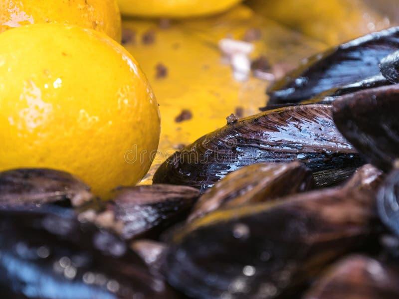 Γεμισμένα μύδια και λεμόνι στοκ φωτογραφία