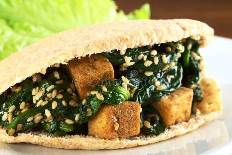 γεμισμένο tofu σπανακιού σο&ups στοκ εικόνες με δικαίωμα ελεύθερης χρήσης