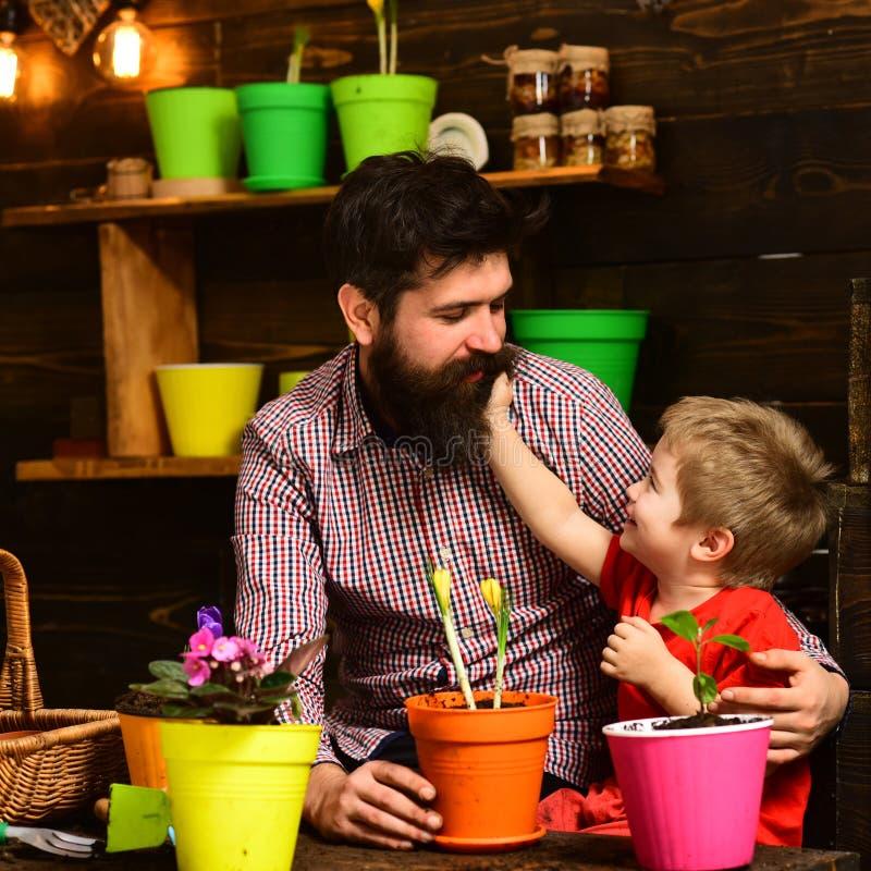 Γενειοφόρος φύση αγάπης παιδιών ατόμων και μικρών παιδιών Οικογενειακή ημέρα θερμοκήπιο ευτυχείς κηπουροί με τα λουλούδια άνοιξη  στοκ εικόνες