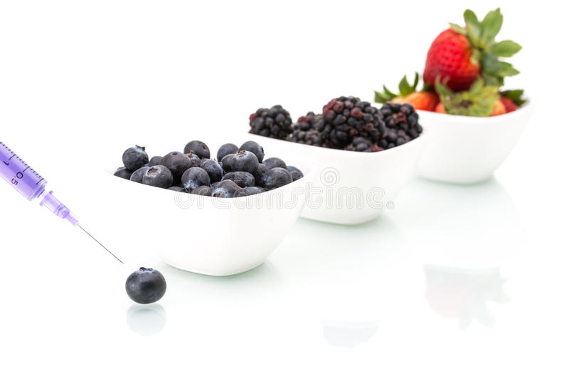 Γενετική τροποποίηση, βακκίνιο, βατόμουρο, φράουλα, φρούτα, στοκ φωτογραφίες