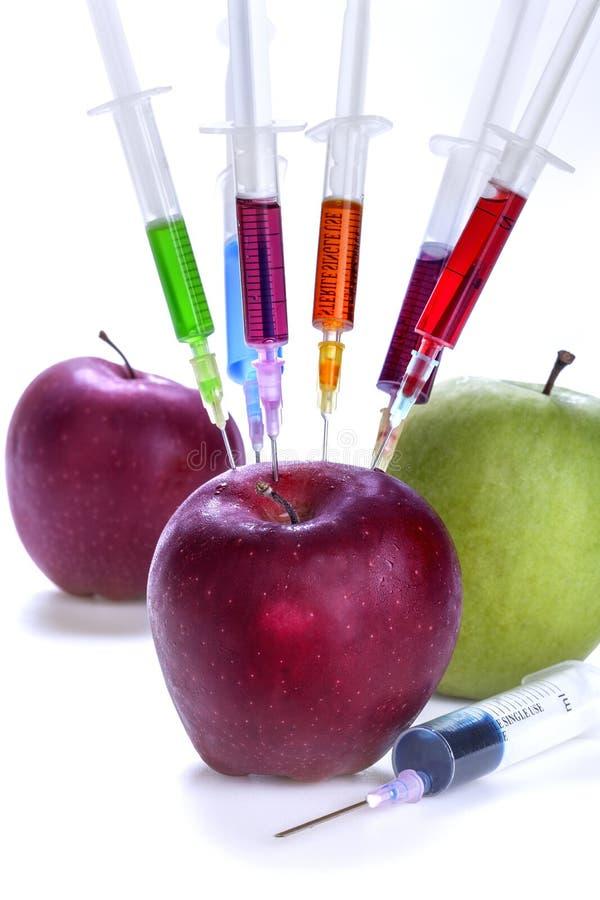 Γενετική τροποποίηση των φρούτων στοκ φωτογραφίες με δικαίωμα ελεύθερης χρήσης