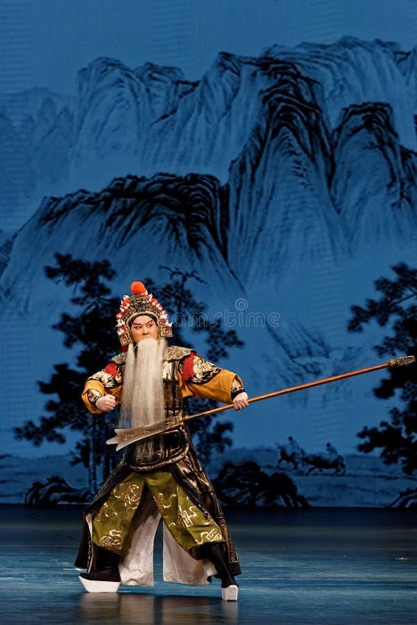 Γενικό συγκρότημα τέχνης βραβείων ανθών οδικών τμήμα-κινεζικό δαμάσκηνων στοκ εικόνες με δικαίωμα ελεύθερης χρήσης
