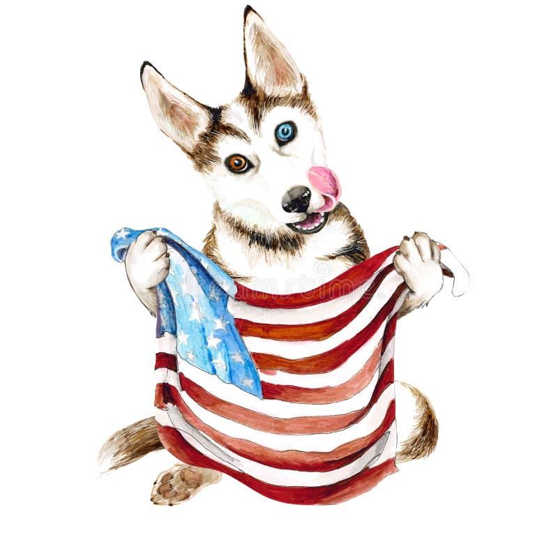 Γεροδεμένες φυλές σκυλιών που κρατούν μια αμερικανική σημαία ΗΠΑ Κουτάβι που απομονώνεται στο άσπρο υπόβαθρο διανυσματική απεικόνιση