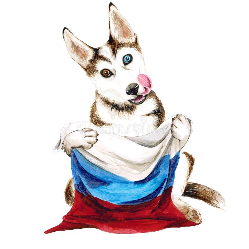 Γεροδεμένες φυλές σκυλιών που κρατούν μια σημαία της Ρωσίας Κουτάβι στην άσπρη ανασκόπηση διανυσματική απεικόνιση