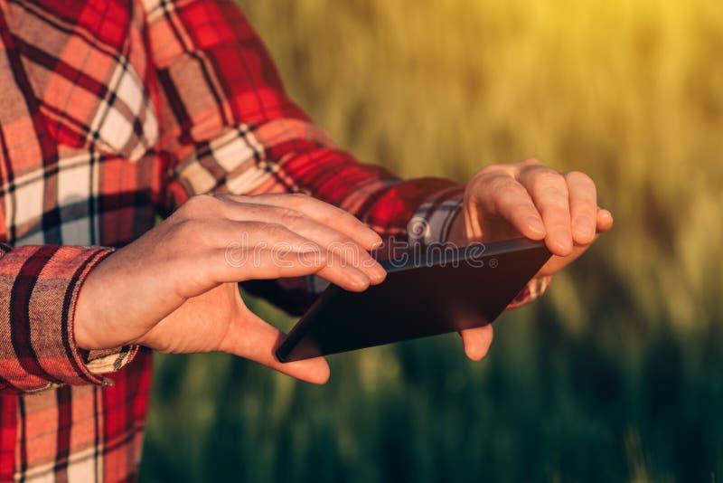 Γεωπόνος που χρησιμοποιεί την έξυπνη τηλεφωνική κάμερα κινητό app στοκ εικόνα με δικαίωμα ελεύθερης χρήσης