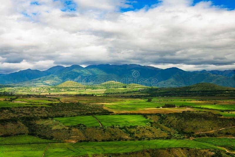 Γεωργία στους λόφους των Άνδεων, Νότια Αμερική στοκ εικόνα
