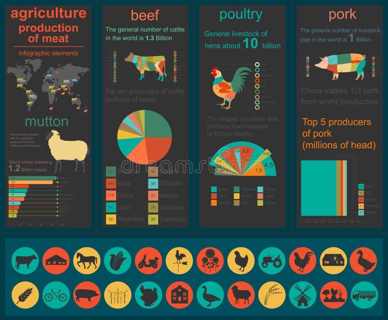 Γεωργία, infographics κτηνοτροφικής παραγωγής, διανυσματικές απεικονίσεις ελεύθερη απεικόνιση δικαιώματος