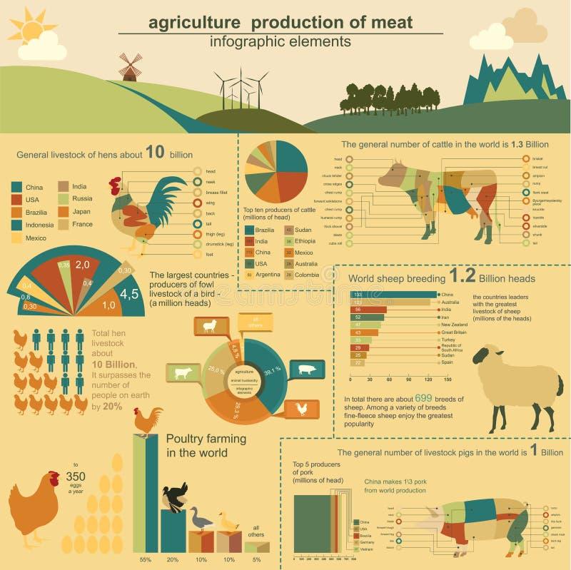 Γεωργία, infographics κτηνοτροφικής παραγωγής, διανυσματικές απεικονίσεις διανυσματική απεικόνιση