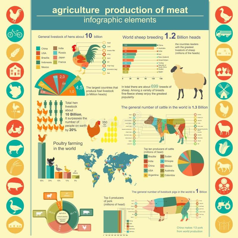 Γεωργία, infographics κτηνοτροφικής παραγωγής διανυσματική απεικόνιση