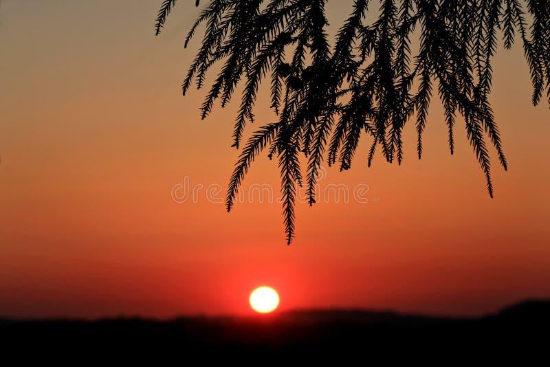 ΓΕΩΡΓΙΑ, guria, askana, ηλιοβασίλεμα 2017 έτος στοκ φωτογραφία