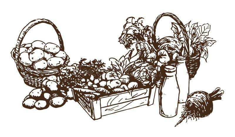 Γεωργικά προϊόντα - τρόφιμα, σύνολο χειροποίητων εικονογραφήσεων διανυσματική απεικόνιση
