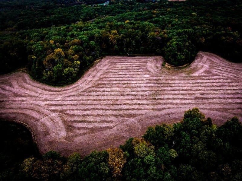 Γεωργική γη στο δάσος στοκ εικόνες