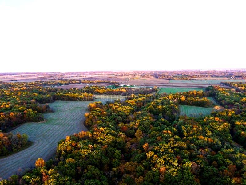 Γεωργική γη στο δάσος στοκ φωτογραφία με δικαίωμα ελεύθερης χρήσης