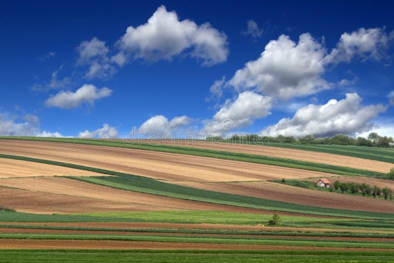Γεωργική γη στοκ φωτογραφίες με δικαίωμα ελεύθερης χρήσης
