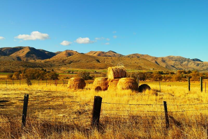 γεωργικοί όμορφοι ρόλοι τοπίων σανού στοκ φωτογραφία με δικαίωμα ελεύθερης χρήσης