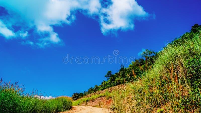 γεωργικός δρόμος στοκ φωτογραφίες με δικαίωμα ελεύθερης χρήσης