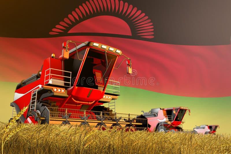 Γεωργικός συνδυάστε τη θεριστική μηχανή που λειτουργεί στον τομέα σιταριού με το υπόβαθρο σημαιών του Μαλάουι, έννοια παραγωγής π ελεύθερη απεικόνιση δικαιώματος