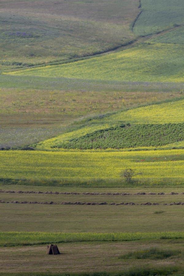 Γεωργικό βουνό τοπίων στοκ φωτογραφίες με δικαίωμα ελεύθερης χρήσης