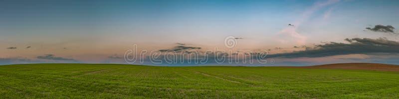 γεωργικό τοπίο άνοιξη βραδιού πανοραμική άποψη του λοφώδους πράσινου τομέα και του δραματικού ουρανού μετά από το ηλιοβασίλεμα στοκ φωτογραφία με δικαίωμα ελεύθερης χρήσης